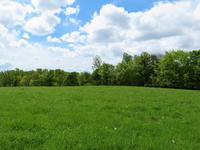 French property for sale in ST FRAIMBAULT, Orne - €76,000 - photo 6