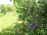 French property for sale in LE BOUCHAGE, Charente - €104,500 - photo 10