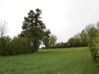 French property for sale in MONTREUIL, Pas de Calais - €66,000 - photo 9