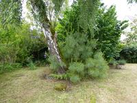 French property for sale in PINEUILH, Gironde - €98,100 - photo 10