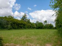 French property for sale in TRIBEHOU, Manche - €210,060 - photo 9