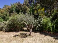 French property for sale in GONFARON, Var - €287,000 - photo 2
