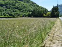 French property for sale in CHAUM, Haute Garonne - €26,000 - photo 4