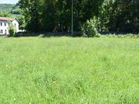 Terrain à vendre à CHAUM en Haute Garonne - photo 4