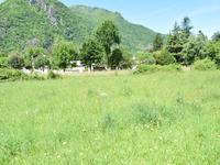 French property for sale in CHAUM, Haute Garonne - €46,000 - photo 7