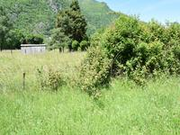 French property for sale in CHAUM, Haute Garonne - €46,000 - photo 4