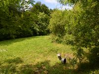 French property for sale in MOUZON, Charente - €348,740 - photo 10