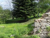 French property for sale in STE CATHERINE, Puy de Dome - €13,000 - photo 5