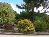 French property for sale in ARGENTAT, Correze - €241,500 - photo 2