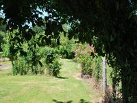 French property for sale in BUSSIERE POITEVINE, Haute Vienne - €148,785 - photo 4