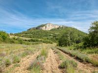 French property for sale in MEVOUILLON, Drome - €340,000 - photo 5