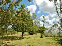 Gated and fully enclosed property