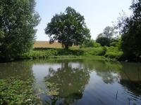 French property for sale in ORIGNY LE ROUX, Orne - €255,000 - photo 2