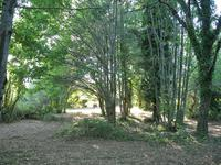 French property for sale in LA COQUILLE, Dordogne - €18,000 - photo 2