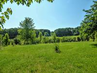 French property for sale in TREMOLAT, Dordogne - €339,200 - photo 10