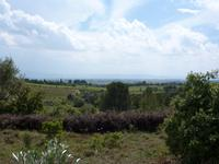 French property for sale in CESSERAS, Herault - €20,000 - photo 2