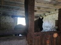 Maison à vendre à DINGE en Ille et Vilaine - photo 9