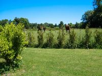 French property for sale in CRETTEVILLE, Manche - €344,500 - photo 2