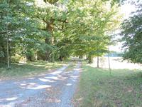 French property for sale in AGONAC, Dordogne - €840,000 - photo 4