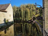 Terrain à vendre à DAMPIERRE SUR BOUTONNE en Charente Maritime - photo 6