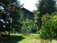 French property for sale in TOURTRES, Lot et Garonne - €149,950 - photo 4