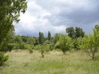 French property for sale in TOURTRES, Lot et Garonne - €189,000 - photo 2