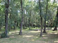 French property for sale in LA JARNE, Charente Maritime - €136,250 - photo 10