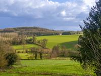 French property for sale in ST GOUENO, Cotes d Armor - €104,500 - photo 9