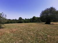 French property for sale in PERIGORD VERT, Dordogne - €36,000 - photo 9