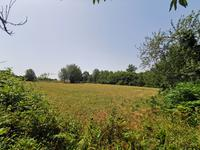 French property for sale in PERIGORD VERT, Dordogne - €36,000 - photo 7