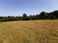 French property for sale in PERIGORD VERT, Dordogne - €36,000 - photo 6