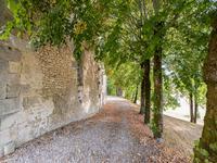 Commerce à vendre à ST MARTIAL VIVEYROL en Dordogne - photo 7
