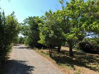 French property for sale in CAZERES, Haute Garonne - €341,250 - photo 2