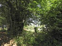 Terrain à vendre à UZERCHE en Correze - photo 2