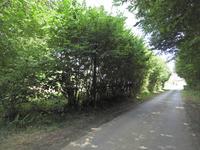 Terrain à vendre à UZERCHE en Correze - photo 4