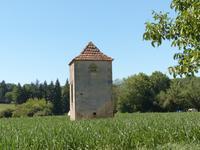 Maison à vendre à LALINDE en Dordogne - photo 5