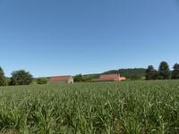 Maison à vendre à LALINDE en Dordogne - photo 8