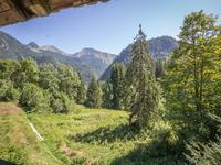 French property for sale in SAINT JEAN D AULPS, Haute Savoie - €325,000 - photo 10