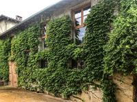 Maison à vendre à ST DIDIER SUR CHALARONNE en Ain - photo 6