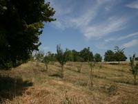 French property for sale in CAZES MONDENARD, Tarn et Garonne - €205,200 - photo 9