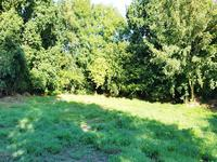 French property for sale in PLESSALA, Cotes d Armor - €51,000 - photo 4