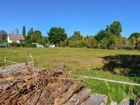 French property for sale in TERRASSON LA VILLEDIEU, Dordogne - €41,000 - photo 2