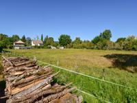 French property for sale in TERRASSON LA VILLEDIEU, Dordogne - €41,000 - photo 3