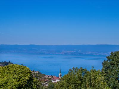 Lugrin: stunning Lac Léman views; character charm; pretty garden; additional barn with renovation potential. All features of this beautifully renovated, detached former farm. Geo-thermal heating. Just 7km from Evian-les-Bains.