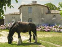 French property for sale in ST MARTIN DE COUX, Charente Maritime - €1,260,000 - photo 3