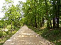 French property for sale in BEAUMONTOIS EN PERIGORD, Dordogne - €630,647 - photo 3