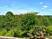 French property for sale in LE BUISSON DE CADOUIN, Dordogne - €275,600 - photo 9