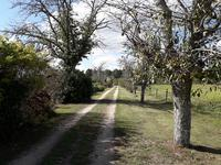 French property for sale in LAGRANGE, Landes - €498,750 - photo 2