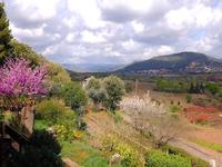 French property for sale in LACOSTE, Herault - €349,000 - photo 10