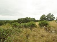 French property for sale in MARGOUET MEYMES, Gers - €46,600 - photo 4